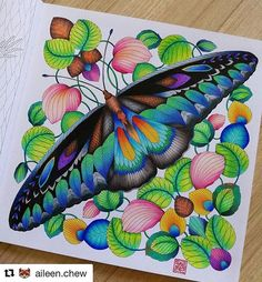 #Repost @aileen.chew (@get_repost) ・・・ The King of Butterflies - Rajah Brooke #curiouscreatures #milliemarotta #adultcolouringbooks #adultcoloringbook #majesticcoloring #calmcolouring #addictedtocoloring #colortherapy #creativelycoloring #colourist #marcorenoir #bayan_boyan #fang_colourful_world999 #arte_e_colorir #artofcolouring #coloringforfun #colorpop #beautifulcoloring