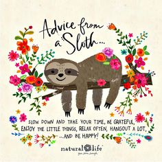 Wise words from a sloth, via Happy Quotes, Positive Quotes, Me Quotes, Mail Design, Natural Life Quotes, Cute Sloth, Quotable Quotes, Happy Thoughts, Belle Photo