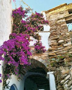 Stelena Levanti (@stelenalevanti) • Instagram photos and videos Greece, Floral Wreath, Wreaths, Photo And Video, Videos, Places, Photos, Travel, Instagram