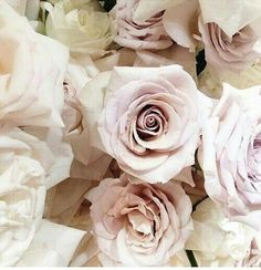 My Story... Shades of beige and pink roses