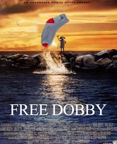 Funny pictures about Free Dobby. Oh, and cool pics about Free Dobby. Also, Free Dobby photos. Harry Potter Universe, Harry Potter Films, Harry Potter Love, Harry Potter Fandom, James Potter, Movies Quotes, Free Dobby, The Meta Picture, No Muggles