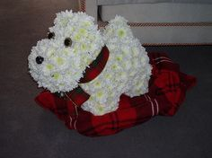 Flower Dog - made out of flowers! Cute!