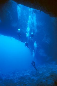 Divers descending into the main cavern of Blue Hole, Palau Islands, Micronesia - Rock Islands - Wikipedia, the free encyclopedia