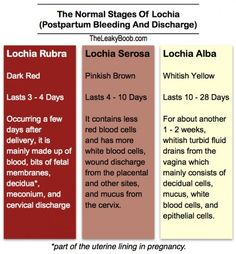 Normal Postpartum Bleeding and Discharge and the Return of Your Period After Giving Birth | The Leaky B@@b