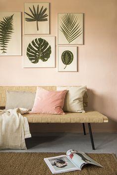 Ingelijste bladeren aan de muur ter decoratie in de woonkamer