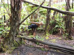 Warrior 3 Rain Forest Hawaii