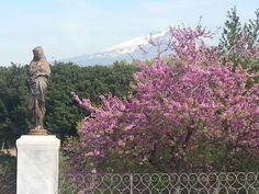 L'Etna in primavera - Giardini Bellini
