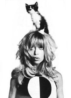 Goldie Hawn mit Katze