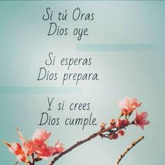 Quotes About God, Me Quotes, Plastic Animal Crafts, Jesus Pictures, Scripture Verses, Bible, Uplifting Quotes, Spanish Quotes, Wise Words