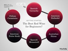 What are the best red wines to start your adventures in wine? The following wines are useful benchmarks for basic understanding. With over 1300 types of wine grapes, this is just the tip of the iceberg.