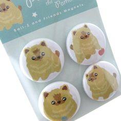 cute Pomeranian magnets
