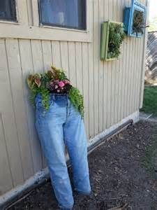 blue jean planter directions - Bing Images