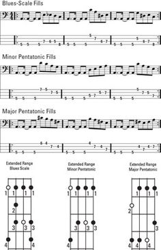 11 Top Bass Guitar Fretboard Note Stickers Bass Guitar Tuner Clip On Bass Guitar Scales, Bass Guitar Notes, Bass Guitar Chords, Bass Guitar Parts, Basic Guitar Lessons, Acoustic Guitar Lessons, Guitar Lessons For Beginners, Acoustic Guitars, Guitar Tips