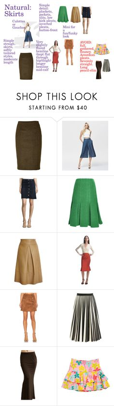 Natural Skirts by adhp on Polyvore featuring Martin Grant, Proenza Schouler, Thakoon, Zac Posen, Jonathan Saunders, McGuire, 1.State, Forever New and Lilly Pulitzer