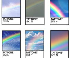 pantone tattone // tattone pantone