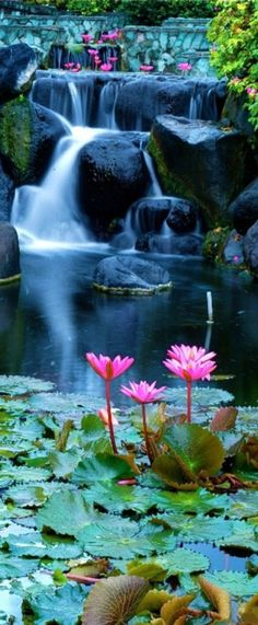 Lotus blossom waterfall in Bali, Indonesia • photo: Kitty Kono