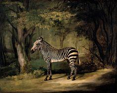 George Stubbs, Zebra, 1763, Oil on canvas, 102.9 x 127.6 cm