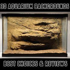 3D Aquarium Backgrounds http://www.aquarium-backgrounds.net/3d-aquarium-backgrounds-best-choice-reviews/