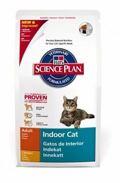 99 Ideas De Pienso Para Gatos Pienso Para Gatos Comida Para Gatos Gatos