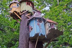 Treehouses We Wish We Had Growing Up