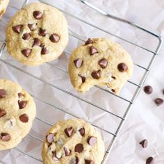 The Best Chocolate Chip Cookies-Your source of sweet...
