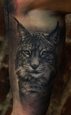 Lince de estilo black and grey.
