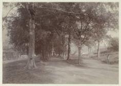 Kerklaan op Banda Naira, ca. 1901 - collectie KITLV