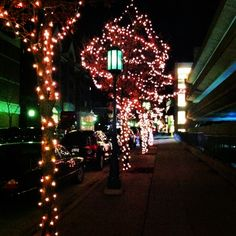 Christmas twinkle lights in downtown Birmingham, Michigan.