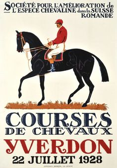 Olympics 1936 Horse Sport Germany Dressage 16X20 Poster Repro FREE SHIP in USA