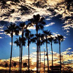 The Grove, Los Angeles #LAeveryday