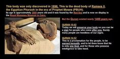 Quran The miracle of the miracles - Pharaoh Islam And Science, Science Facts, Life Science, Miracles Of Islam, Islamic Miracles, Egyptian Era, Mummy Museum, Supernatural Facts, Islamic Inspirational Quotes
