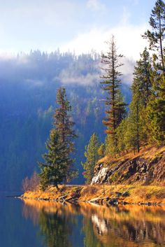 A scenic area along the shore line of Fernan Lake near Coeur d'Alene, #Idaho