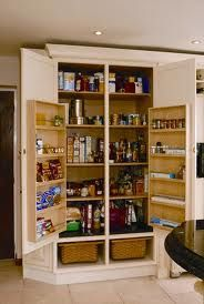classic pantry cupboard - I totally need shelves on the inside of my pantry door! Pantry Cupboard Designs, Pantry Ideas, Kitchen Ideas, Lounge Areas, Kitchen Gadgets, Liquor Cabinet, House Plans, Kitchens, Interior Decorating