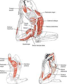 La inspiración de yoga - B E N E S T I F - Estimular los órganos internos; - Estirar los glúteos profundas; - Estirar las ingles y psoas (mucho músculo en el lado de la columna vertebral y la pelvis); - Aliviar piriforme incidido y aliviar el dolor ciático; - Ayuda con trastornos urinarios; - Ofrecer liberación emocional.