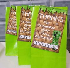 Minecraft Birthday Party Ideas | Photo 1 of 25