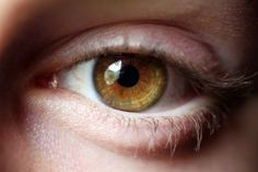 What I Learned From Studying The Anatomy Of The Eye