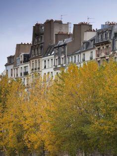 Buildings of the Ile De La Cite, Paris, France