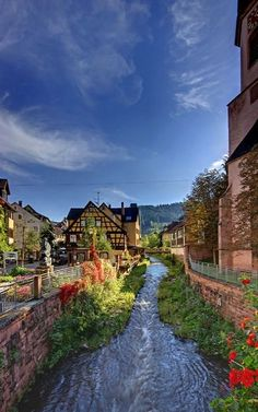 The Black Forest (Germany) Baden Germany, Bavaria Germany, Places To Travel, Places To See, Wonderful Places, Beautiful Places, Black Forest Germany, Famous Places, Germany Travel