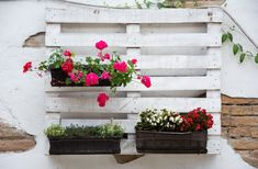 Vertical Garden DIY Ideas Using a Wooden Pallet (Plus, a Tutorial!)
