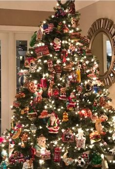 Within the next two weeks, everyone will be putting up their trees and decking the halls.  I love seeing all the festive trees and decoratio...