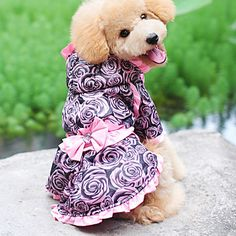 Graceful Rose Style Hoodie Dresses for Dogs (XS-XL) – USD $ 16.49