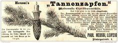 Original-Werbung/ Anzeige 1897 - HEUSSI'S TANNENZAPFEN / PAUL HEUSSI - LEIPZIG  - ca. 140 x 45 mm