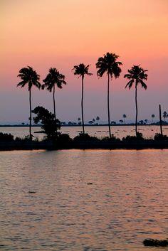 Kumarakom,Kerala,IN,