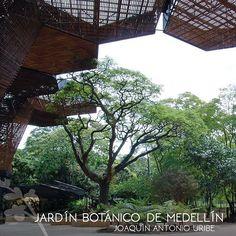 Estando en la ciudad, no dejes de visitar el Jardín Botánico de Medellín Joaquín Antonio Uribe, te ofrece espacios desbordantes en vegetación y la colección más  grande de orquídeas de la ciudad, siendo un lugar de reserva, protección ambiental y refugio en pleno corazón de la ciudad.  #tienesunacitaconelplaneta #savethedatewithplanetearth #terrabiohotel  #hotelescolombia #hotelecológico #turismosostenible #ecoturismo  #ecoturismocolombia #slowlife #colombia