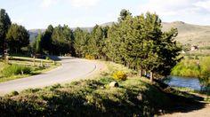 #Neuquen #Alumine #Patagonia #Argentina #Viajes #Travel #ArgentinaEsTuMundo #Turismo #Verde #Green #Colour #Colores Más info de viajes por Argentina en www.facebook.com/viajaportupais