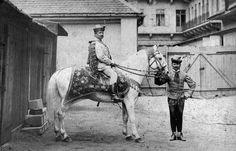 Fortepan Hungary, Horses, Traditional, Animals, Animales, Animaux, Animal, Animais, Horse