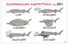 Learn Finnish, Finland, Vocabulary, Learning, Words, Funny, Characters, Animals, Design