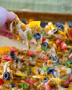 Chicken Nachos with No Chips or Tortillas! Use raw cheese and leftover chicken atop capsicum (bell peppers) for an awesome meal.