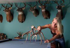 Mounts. Deer Hunting Decor, Hunting Cabin, Deer Skulls, Deer Antlers, Deer Shoulder Mount, Man Cave Office, Taxidermy Display, European Mount, Tool Room