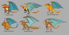 nmzuka:an updated, better show of Charizard variants since the original was pretty rough and not as detailed as my later twofirst image is body types and I added the thought of a Pet body type pretty much taking bigger dangerous pkmn and making them slightly less so and more suited for casual companionshipmiddle is subspecies and these were a lot of fun! I had a hard time narrowing down all the types I wanted to draw (was fun doing color patterns too and wanted to add some to the Veiled)and…